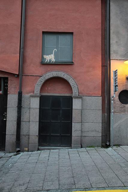 ふと見上げた建物の2階にはネコさんが!