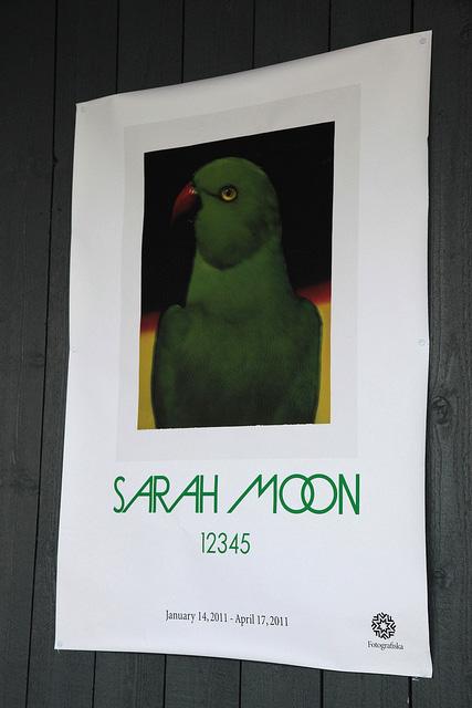 サラ・ムーンのポスター